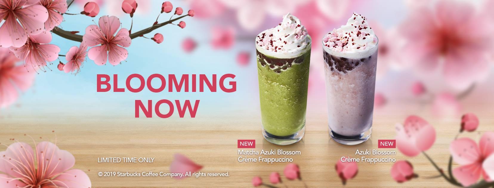 starbucks-cherry-blossom-2