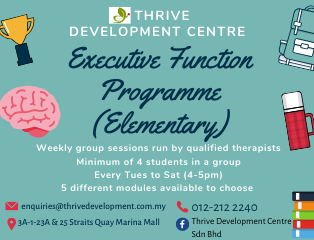 executive-function-programme-elementary-1
